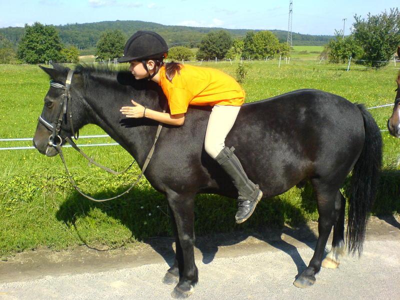 Ponyhof Nos Spruche